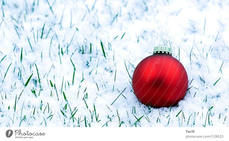 ostern? Weihnachten & Advent blau weiß schön rot Winter kalt Wiese Schnee Gras Feste & Feiern Bodenbelag Weihnachtsdekoration rund Rasen