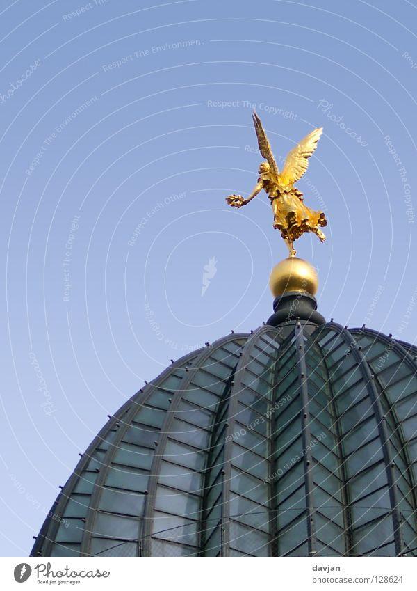 Engelein flieg! Kuppeldach Dresden Sachsen Studium Gebäude Dach Glasdach historisch Wahrzeichen Denkmal fliegen Kunstakademie gold Flügel Freiheit losfliegen