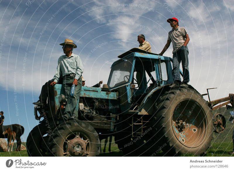 Landarbeit Natur 3 Aussicht Landwirtschaft Landwirt Traktor Arbeit & Erwerbstätigkeit Feldarbeit