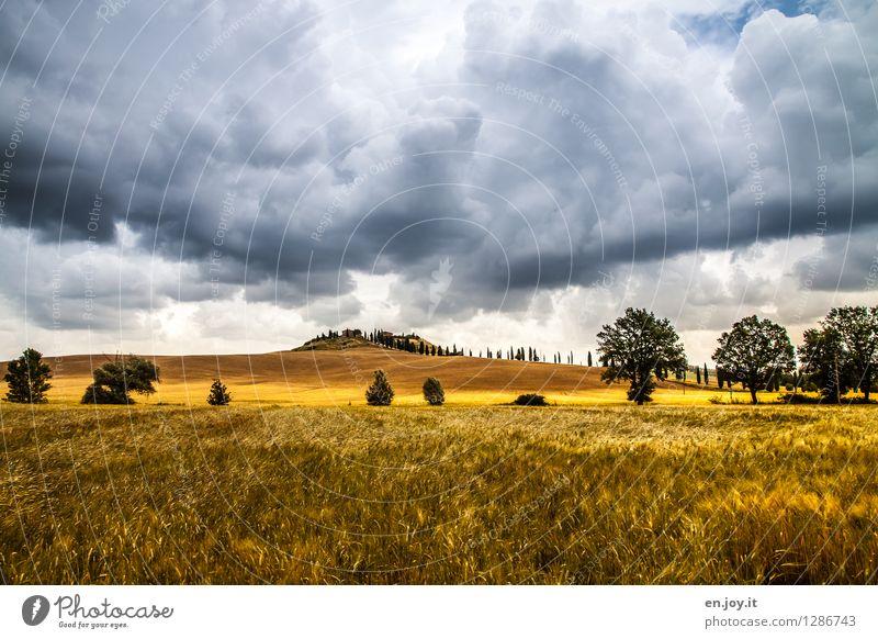 regnerisch Himmel Natur Ferien & Urlaub & Reisen Sommer Landschaft Wolken Ferne dunkel Herbst Horizont Wetter Feld Klima bedrohlich Italien Hügel