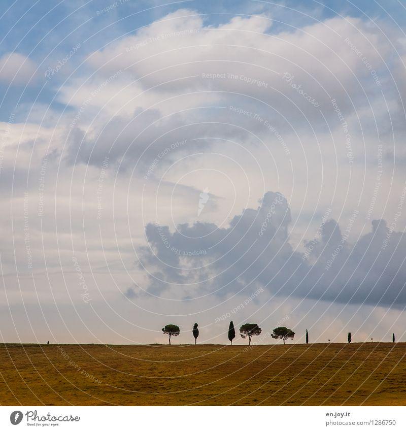 huch 500 :-) | diversity Ferien & Urlaub & Reisen Ausflug Ferne Sommer Sommerurlaub Natur Landschaft Pflanze Himmel Wolken Horizont Herbst Zypresse Pinie Baum