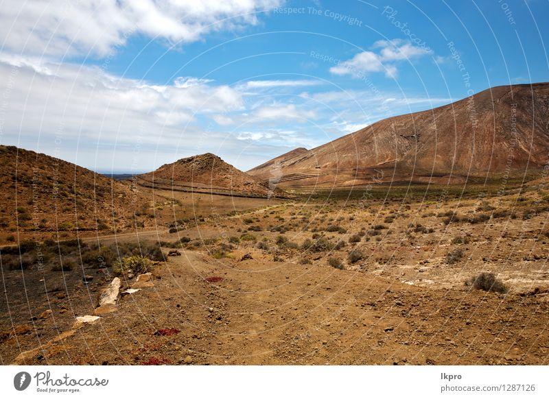 Stein Himmel Hügel und Sommer Lanzarote Spanien Ferien & Urlaub & Reisen Tourismus Ausflug Abenteuer Insel Berge u. Gebirge Natur Landschaft Pflanze Sand Wolken