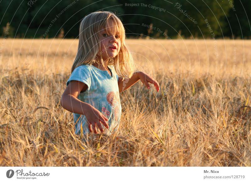 girlie Kind schön Sommer Hand Mädchen Ferne Wärme hell Feld blond stehen Schönes Wetter niedlich weich T-Shirt Körperhaltung