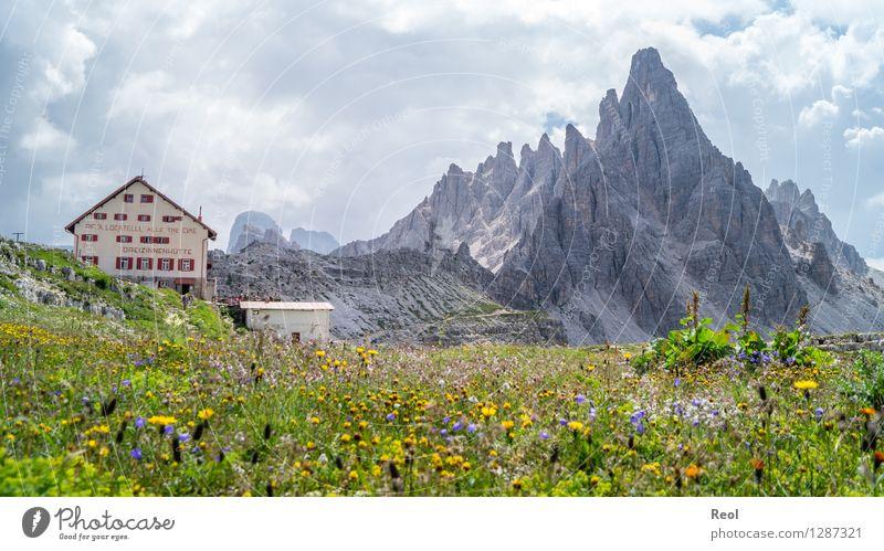 Dreizinnenhütte II Himmel Natur Ferien & Urlaub & Reisen blau grün Sommer Erholung Blume Landschaft Wolken Berge u. Gebirge Umwelt Wiese Felsen Tourismus wandern