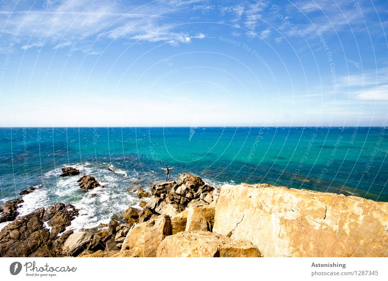am Meer Mensch maskulin Körper 1 18-30 Jahre Jugendliche Erwachsene Umwelt Natur Landschaft Luft Wasser Himmel Horizont Sommer Wetter Schönes Wetter Wind Felsen