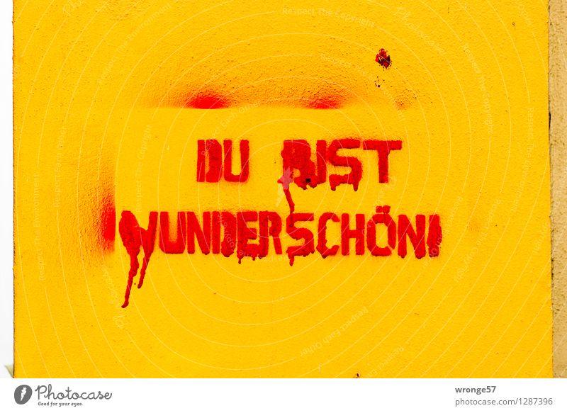 Stralsund - Bekenntnis Stadt schön rot gelb Wand Graffiti Mauer Fassade Textfreiraum Schriftzeichen schreiben entdecken Schmiererei Zuwachs sprühen Giebelseite