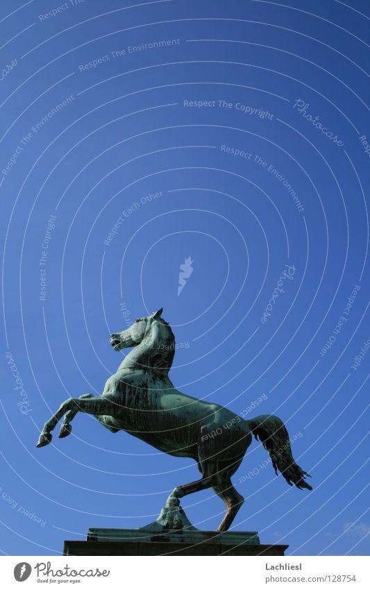 Welfenross II Himmel blau Tier Kunst Freiheit Deutschland elegant Geschwindigkeit Studium Symbole & Metaphern Pferd Wahrzeichen Denkmal Sehenswürdigkeit Statue