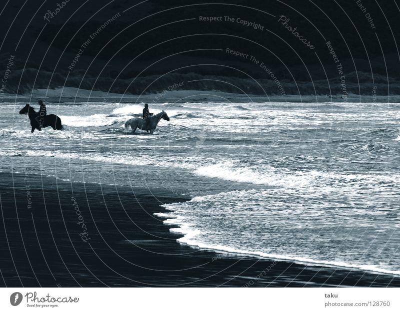 SEPERATE Trennung kaputt Pferd Ausritt Strand Wellen Meer Hügel ungeheuerlich fantastisch p.b seperate blick zurück Reitsport Wasser Sand Paar pferde gehen