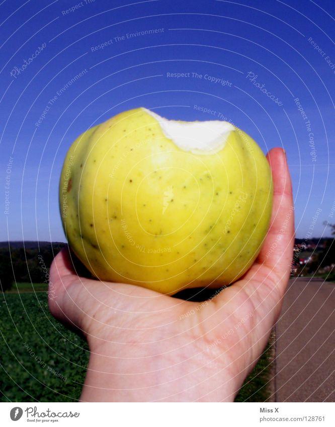 Big Apple Farbfoto Außenaufnahme Tag Frucht Apfel Ernährung Hand Himmel grün Apfelgrün Ernte beißen Essen