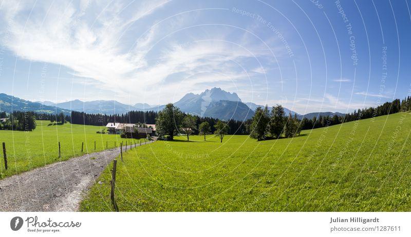 Der wilde Kaiser Natur Ferien & Urlaub & Reisen schön Landschaft Ferne Berge u. Gebirge Umwelt Wiese Wege & Pfade Glück Freiheit Lifestyle Zufriedenheit
