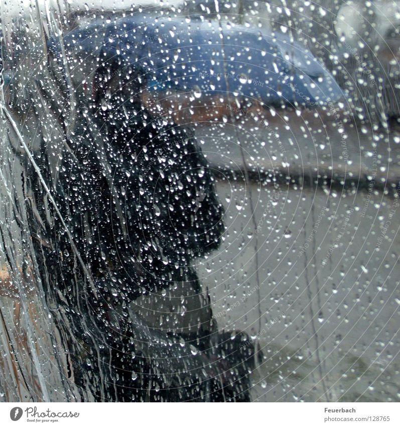 Schietwetter Mensch Wasser blau Straße kalt Herbst grau Frühling Regen Wetter Wind nass Wassertropfen Klima Schutz Regenschirm