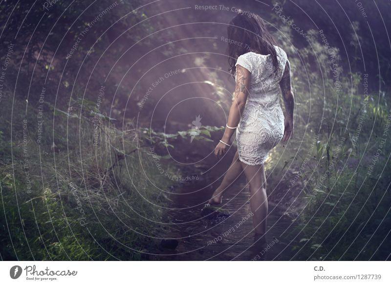 Waldzauber Junge Frau Jugendliche 1 Mensch 18-30 Jahre Erwachsene Natur Wasser Gras Kleid Stoff brünett langhaarig gehen genießen dunkel schön dünn Romantik