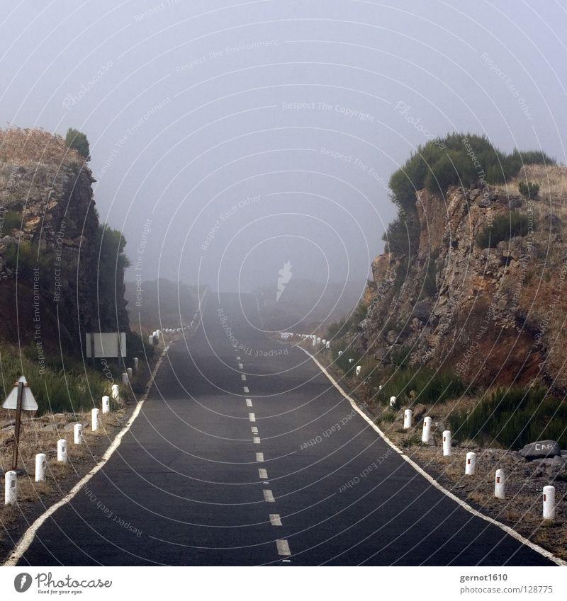 Durchbruch Himmel weiß schwarz Straße grau träumen Wege & Pfade Linie braun Nebel Suche Horizont leer Trauer Ende Unendlichkeit