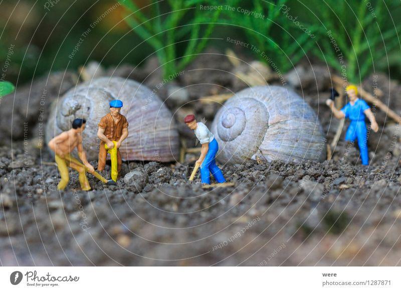 Reihenhaus in Fertigbauweise /1 Mensch Natur Tier Haus Architektur Gebäude Wohnung Häusliches Leben Baustelle Plattenbau bauen Bauarbeiter Handwerker Arbeiter