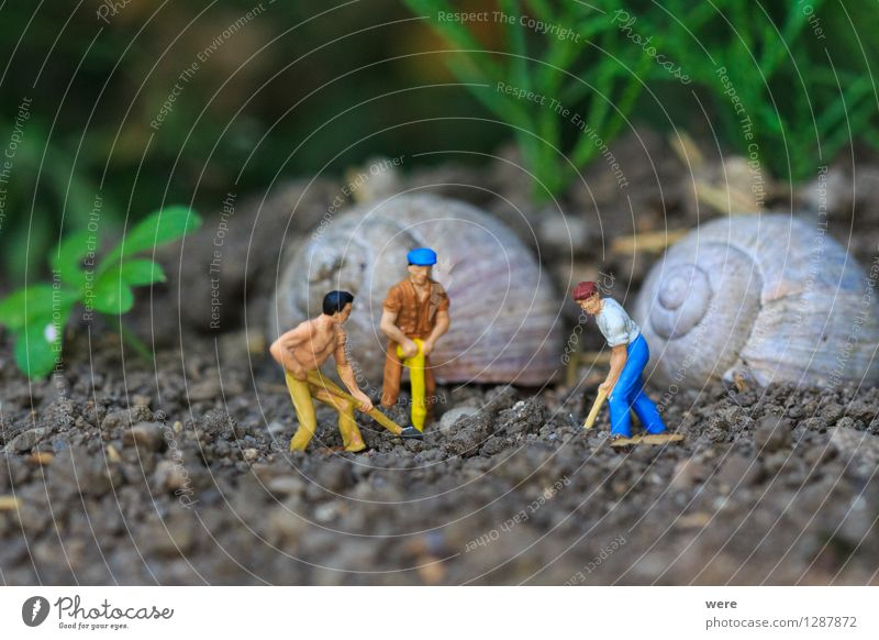 Reihenhaus in Fertigbauweise /3 Mensch Natur Tier Haus Architektur Gebäude Wohnung Häusliches Leben Baustelle Plattenbau bauen Bauarbeiter Handwerker Arbeiter