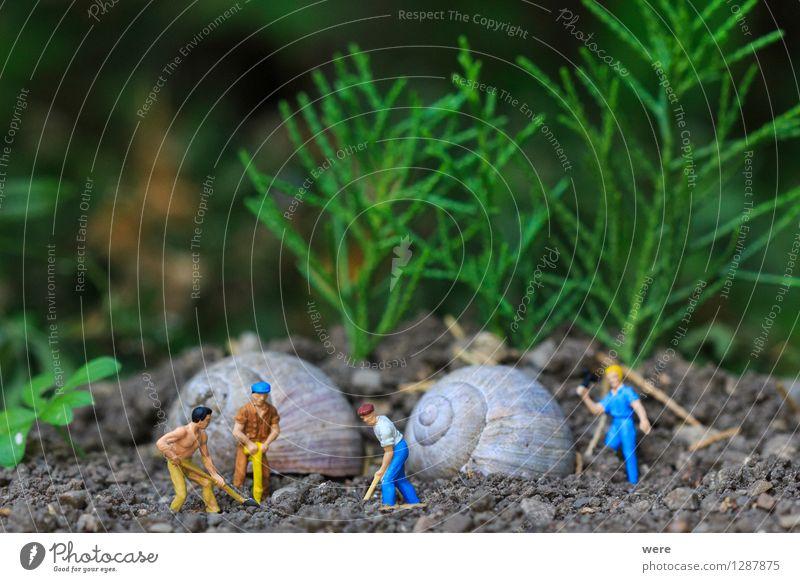 Reihenhaus in Fertigbauweise /2 Mensch Natur Tier Haus Architektur Gebäude Wohnung Häusliches Leben Baustelle Plattenbau bauen Bauarbeiter Handwerker Arbeiter