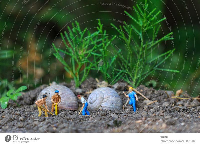 Reihenhaus in Fertigbauweise /4 Mensch Natur Tier Haus Architektur Gebäude Wohnung Häusliches Leben Baustelle Plattenbau bauen Bauarbeiter Handwerker Arbeiter