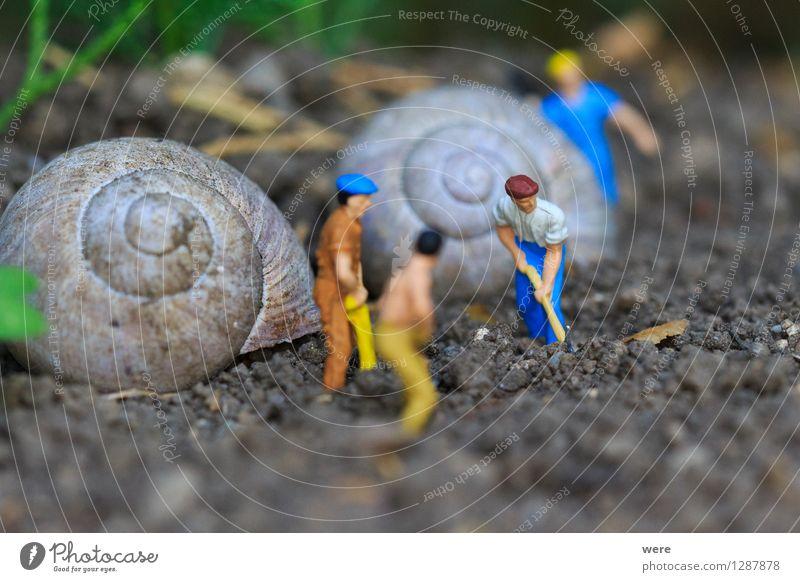 Reihenhaus in Fertigbauweise /5 Mensch Natur Tier Haus Architektur Gebäude Wohnung Häusliches Leben Baustelle Plattenbau bauen Bauarbeiter Handwerker Arbeiter