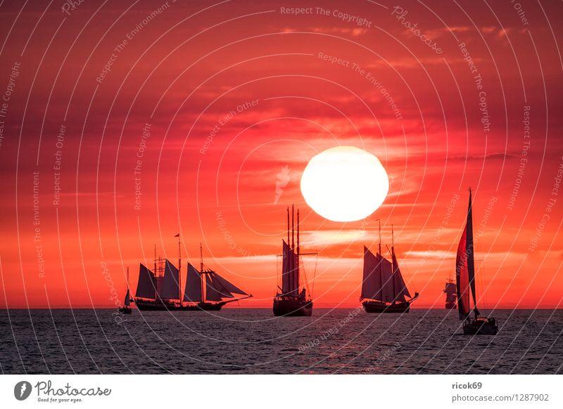Segelschiffe auf der Hansesail Ferien & Urlaub & Reisen Wasser Sonne Erholung rot Wolken gelb Tourismus Idylle Romantik Ostsee Kitsch Tradition Schifffahrt