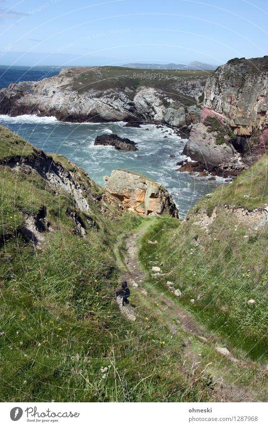 Coast Path wandern Landschaft Schönes Wetter Felsen Küste Bucht Meer Anglesey Wales Kraft Mut rein Wege & Pfade Ferne Brandung Farbfoto Außenaufnahme