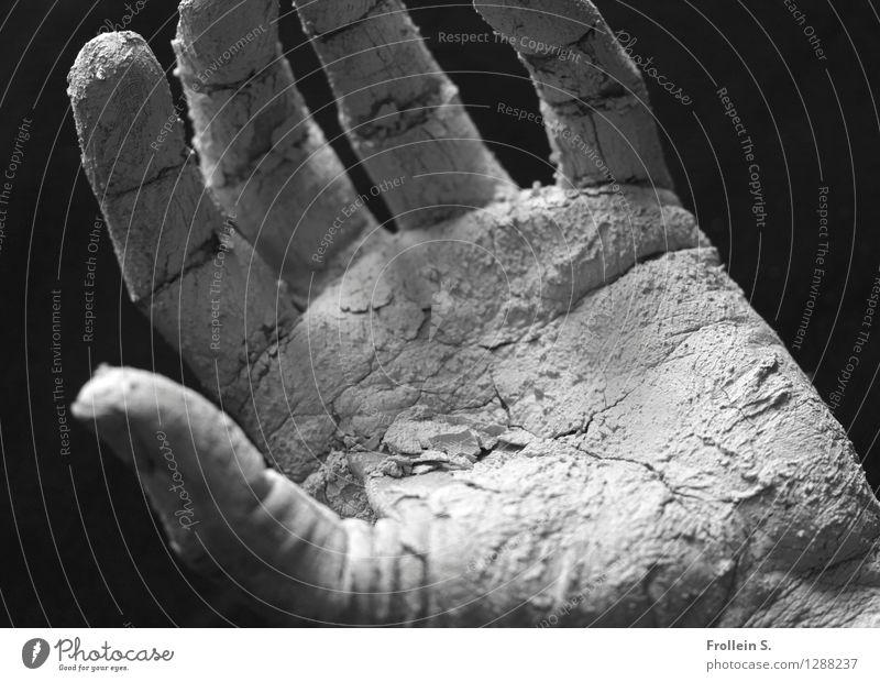 . Mensch Mann Hand Erwachsene offen ästhetisch leer Haut Finger berühren geheimnisvoll festhalten Hautfalten Riss Sinnesorgane greifen