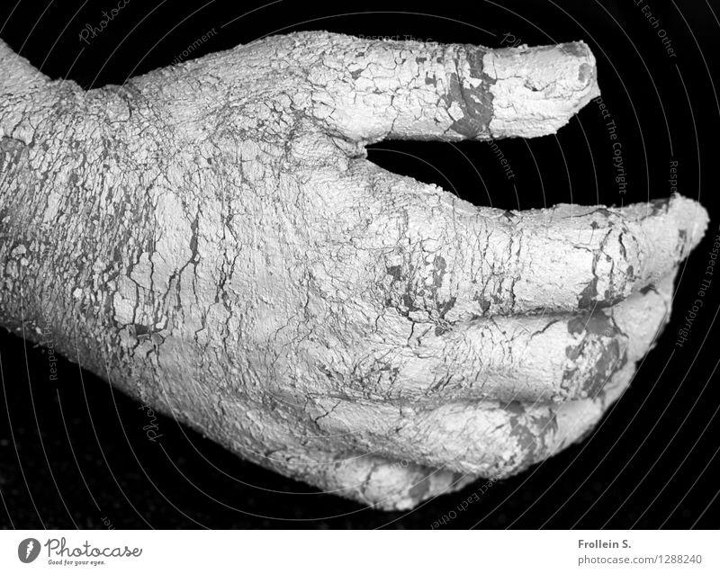 Geben und Nehmen Mensch Jugendliche Mann Hand 18-30 Jahre Erwachsene maskulin Kraft Haut Finger berühren Riss geben Tatkraft nehmen haltend
