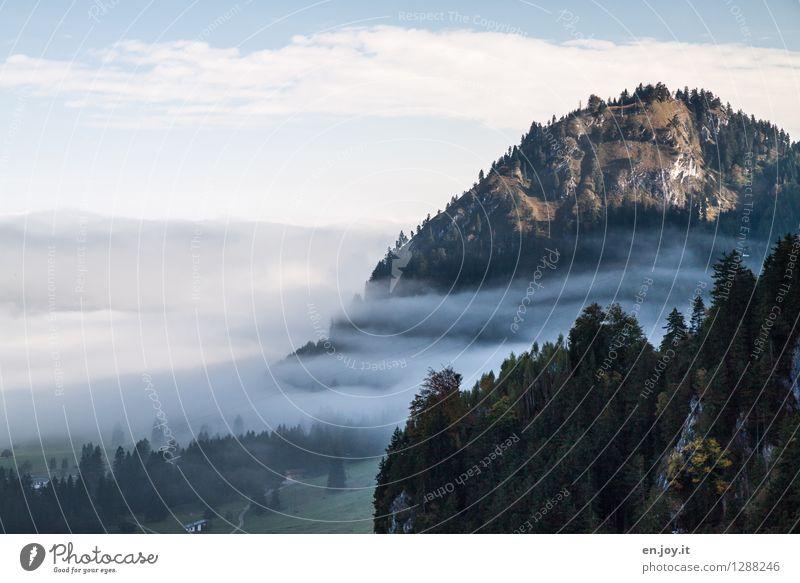 benebelt Himmel Natur Ferien & Urlaub & Reisen Sommer Landschaft ruhig Ferne Wald Berge u. Gebirge Traurigkeit Herbst Freiheit Wetter Nebel Idylle Ausflug