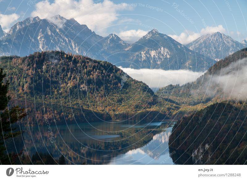 Einsamkeit? Himmel Natur Ferien & Urlaub & Reisen Erholung Landschaft ruhig Wolken Ferne Wald Berge u. Gebirge Herbst Freiheit See Tourismus Nebel