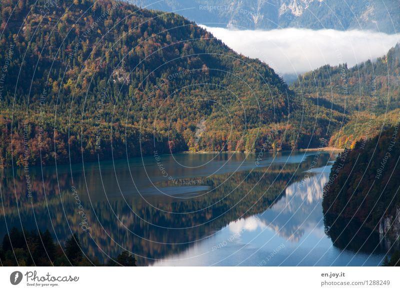 windstill Natur Ferien & Urlaub & Reisen grün Sommer Erholung Landschaft ruhig Wald Berge u. Gebirge Herbst See Zufriedenheit Nebel Idylle wandern Ausflug