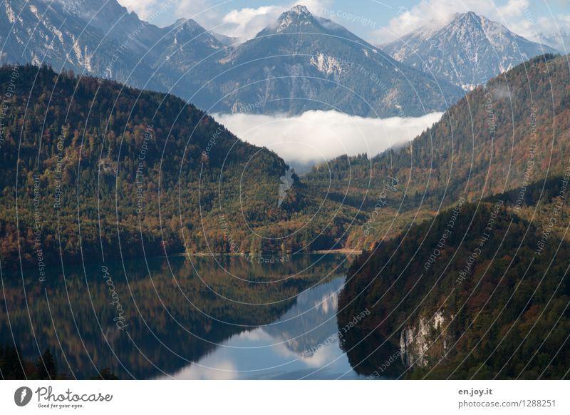 Morgennebel Natur Ferien & Urlaub & Reisen Sommer Erholung Landschaft ruhig Wolken Ferne Wald Berge u. Gebirge Herbst Freiheit See Wetter Nebel wandern