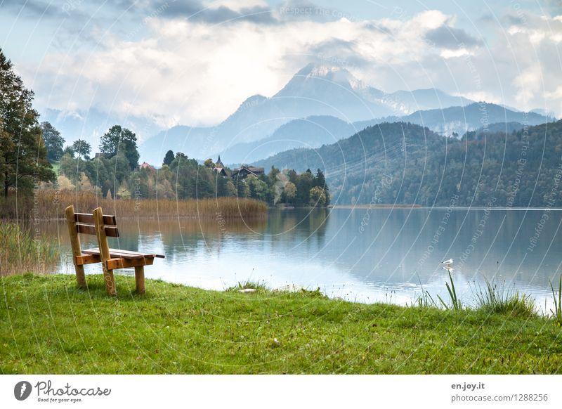 ausruhen Himmel Natur Ferien & Urlaub & Reisen blau grün Sommer Landschaft ruhig Wolken Wald Berge u. Gebirge Herbst Gras See Zufriedenheit Tourismus