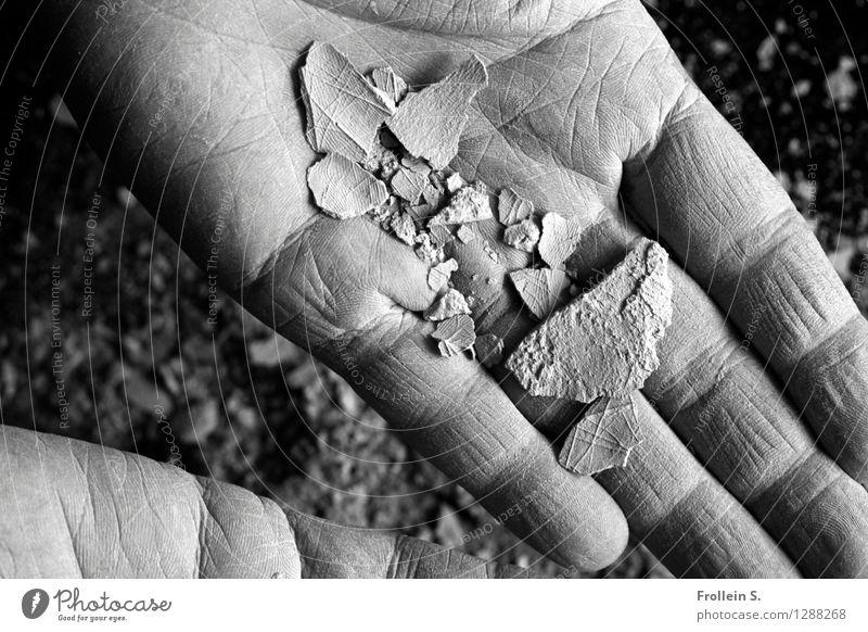 Handlesen 2 Linie ästhetisch Haut Finger berühren Netzwerk Hautfalten zeigen Riss Doppelbelichtung Staub aufmachen Ton Krümel