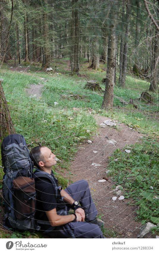 Rast(Platz) Mensch Natur blau Pflanze grün Erholung Einsamkeit ruhig Tier Wald Erwachsene Wege & Pfade braun maskulin wandern sitzen