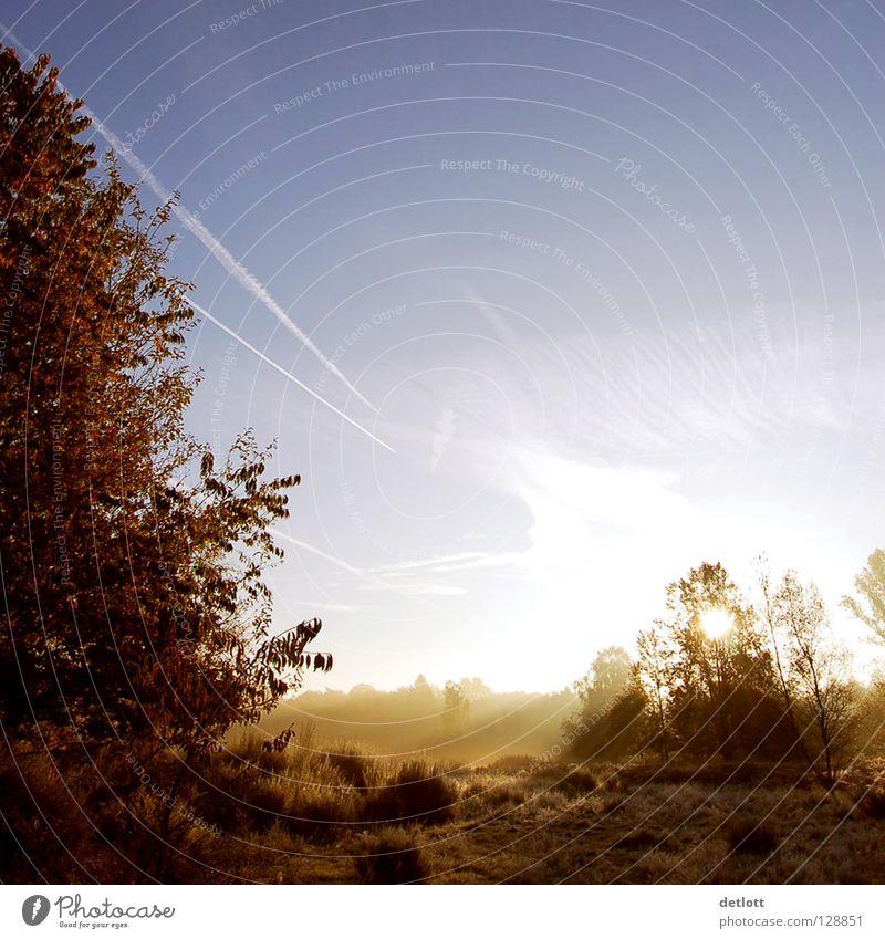 Wahner Heide 20 Sonnenaufgang Morgen braun grün Licht Wolken Nebel Herbst Landschaft Spaziergang Natur Schatten blau