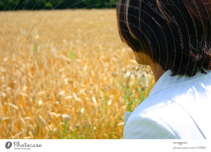 Wo ist er denn? Frau Feld Suche Ernte Weizen Ähren Hosenanzug