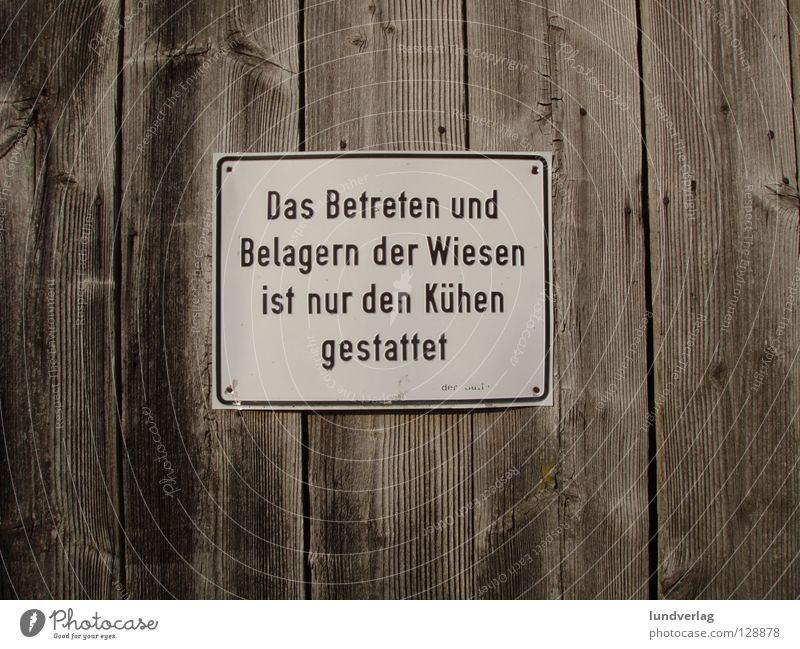 Gruß von der Weide Kuh Bauernhof Wiese Gras Schilder & Markierungen Hinweisschild Warnschild Scheune Stall Landwirtschaft Buchstaben Verbote Verbotsschild
