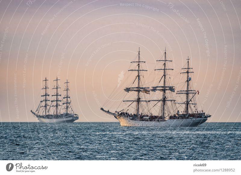 Segelschiffe auf der Hansesail Ferien & Urlaub & Reisen Wasser Erholung rot Wolken gelb Tourismus Idylle Romantik Ostsee Schifffahrt Segeln maritim Rostock