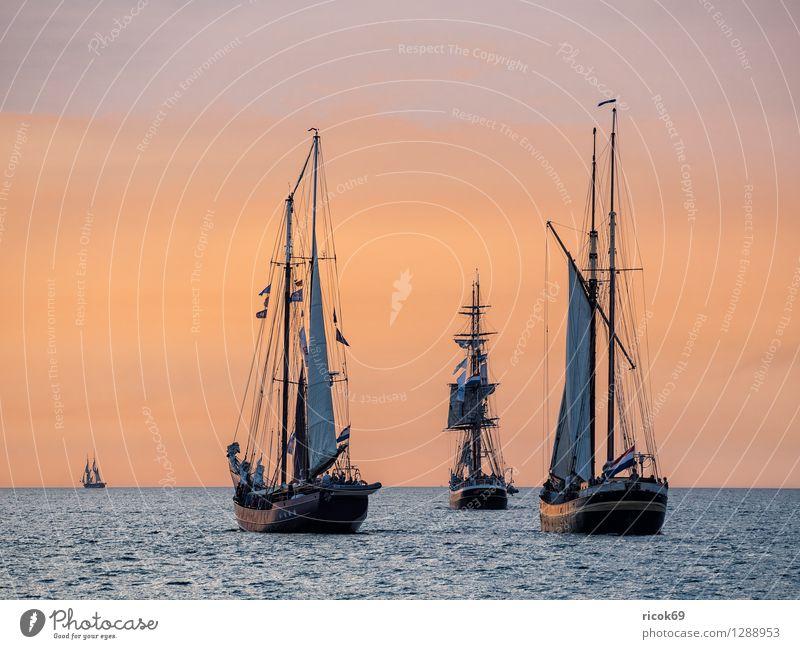 Segelschiffe auf der Hansesail Erholung Ferien & Urlaub & Reisen Tourismus Segeln Wasser Wolken Ostsee Schifffahrt maritim gelb rot Romantik Idylle Windjammer