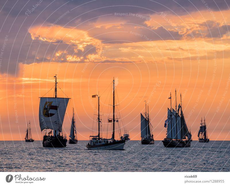 Segelschiffe auf der Hansesail Erholung Ferien & Urlaub & Reisen Tourismus Segeln Wasser Wolken Ostsee Schifffahrt maritim gelb rot Romantik Idylle Kitsch