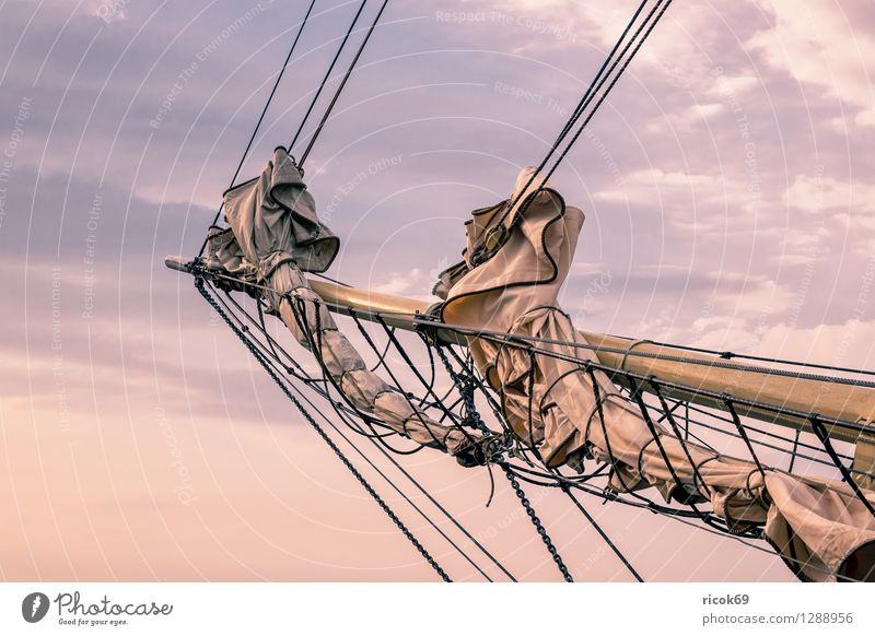 Segelschiff auf der Hansesail Ferien & Urlaub & Reisen Erholung Wolken Tourismus Idylle Romantik Ostsee Schifffahrt Segeln maritim Rostock Warnemünde Windjammer