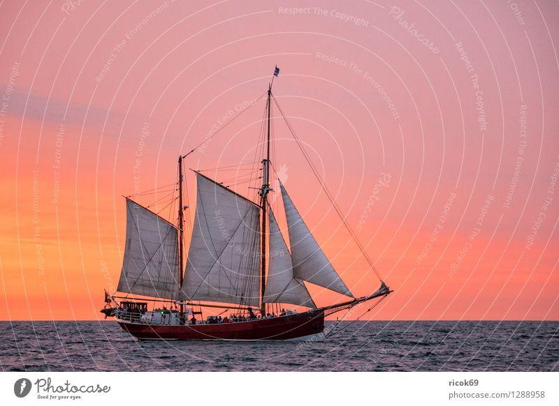 Segelschiff auf der Hansesail Erholung Ferien & Urlaub & Reisen Tourismus Segeln Wasser Wolken Ostsee Schifffahrt maritim gelb rot Romantik Idylle Windjammer