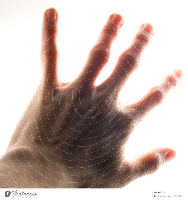 griff ins licht Hand Strahlung Finger Griff Fingernagel Softbox abweisend Freisteller Makroaufnahme Nahaufnahme Vergänglichkeit Lampe Haut fangen Falte Sehne