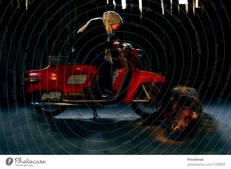 saugefährlich Tier Tod dunkel lustig Risiko skurril tierisch Motorrad Surrealismus Unfall Kleinmotorrad Schwein Langzeitbelichtung Opfer Sau
