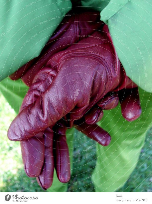 Kontrastmittel grün Aubergine rot Jacke Handschuhe gekreuzt rückwärts Hose Wiese Leder gefaltet Farbkombination Kunst Kunsthandwerk Detailaufnahme Bekleidung