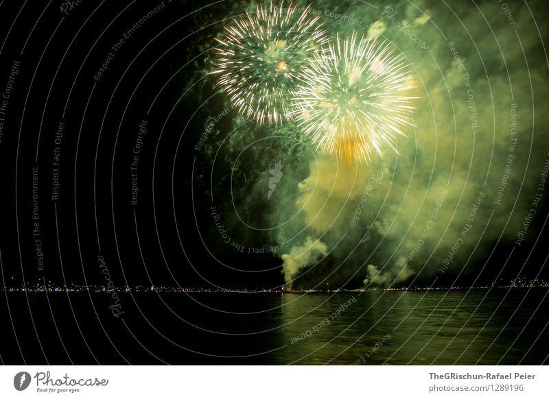 Feuerwerk 9 Künstler Theaterschauspiel gelb gold grau grün orange schwarz silber Strukturen & Formen Explosion Langzeitbelichtung Rauch Licht zünden hell Nacht