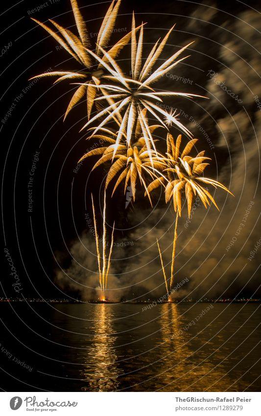 Feuerwerk Kunst Künstler Kunstwerk Theaterschauspiel gelb gold orange schwarz silber weiß Rauch Palme zünden Rakete dreckig Wasser Reflexion & Spiegelung Licht