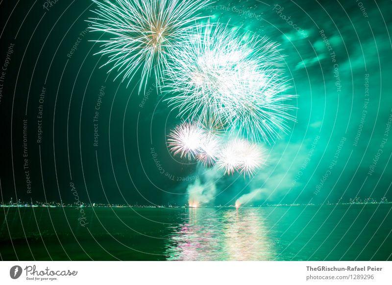Feuerwerk 5 Künstler Theaterschauspiel grau grün orange schwarz weiß grell hell Palme Rauch Schwefel Wasser Reflexion & Spiegelung See Stimmung fest Party