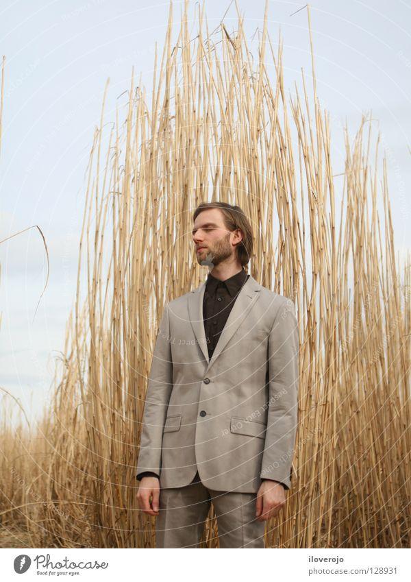 anzug 01 Mann Natur Einsamkeit grau Traurigkeit Feld maskulin Bekleidung dünn Getreide Anzug Bart schick Kornfeld Weizen