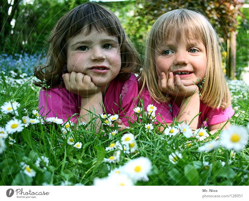 Grinsebacken Kind Hand Mädchen schön weiß Baum Blume grün Freude Gesicht gelb Erholung Wiese Glück Paar Freundschaft