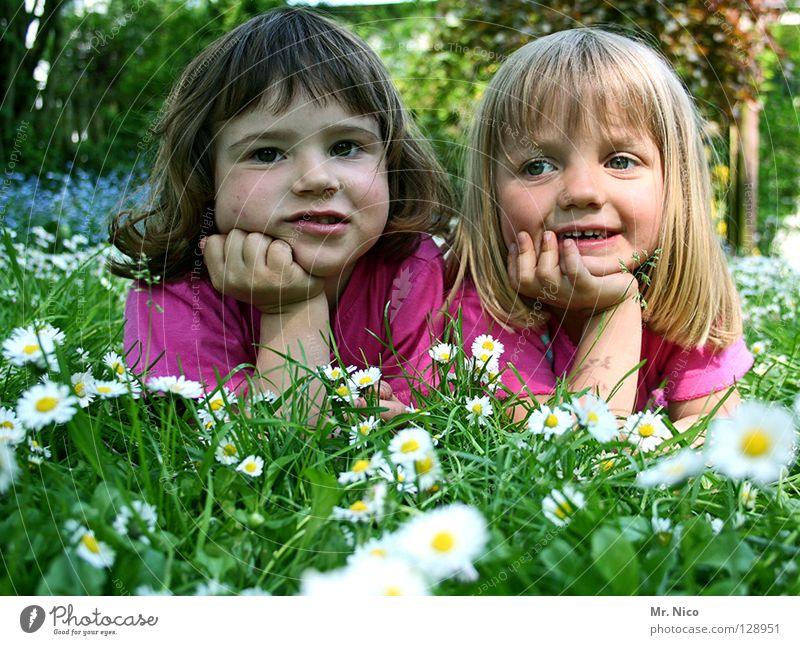Grinsebacken Kopfstütze Freundschaft Aussehen sommerlich Mädchen 2 niedlich schön blond dunkelhaarig grinsen Fröhlichkeit Zufriedenheit Wiese Gänseblümchen